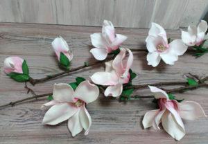 4_magnolii